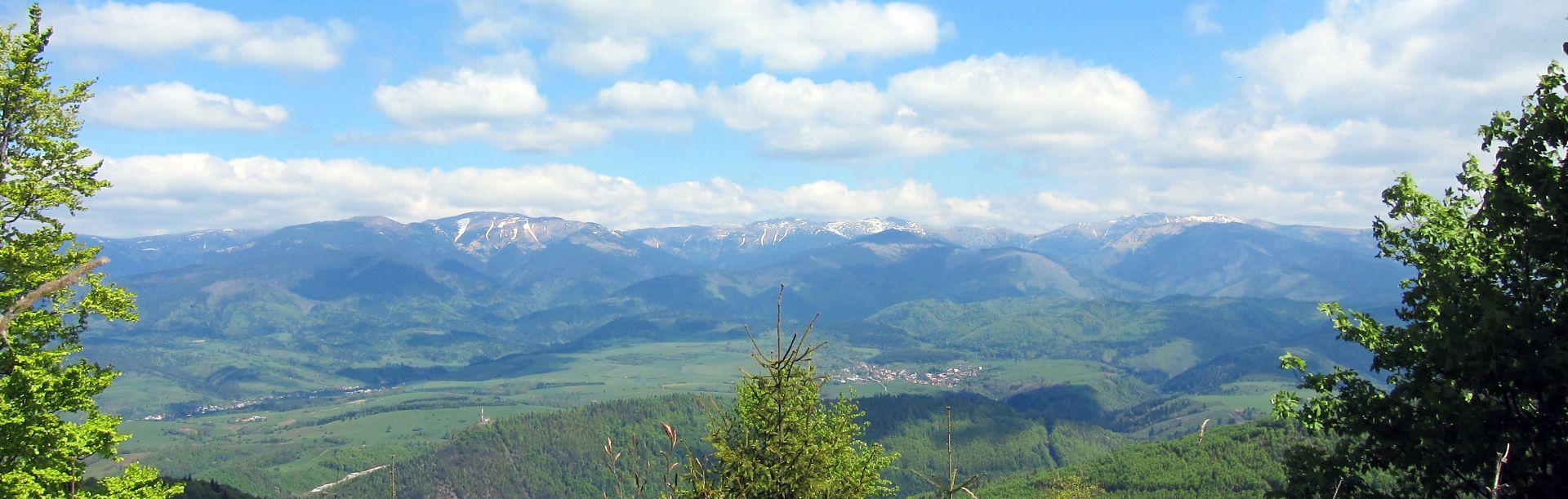 Panoramabild-Verein-IV