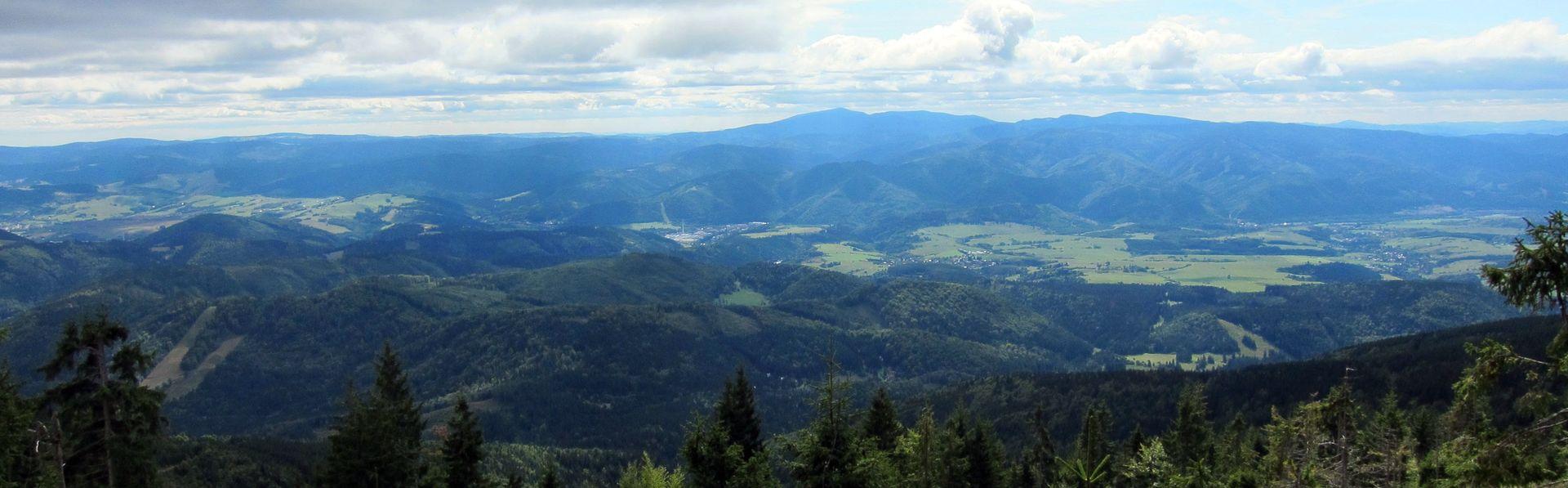Panoramabild-Verein-VI